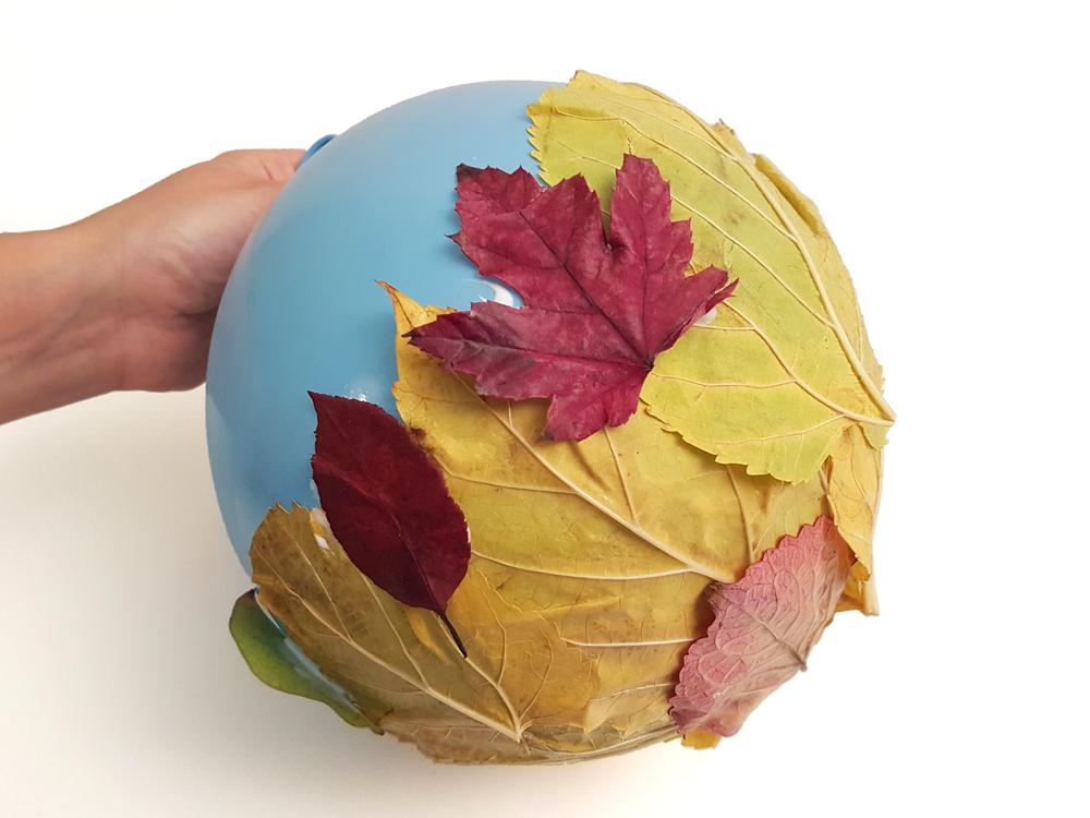 proceso cuenco hojas