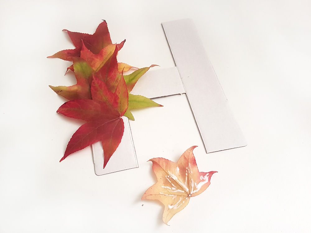 proceso letra hojas