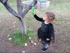 Little girl pulling on pinata