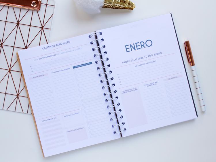 Agenda objetivos enero