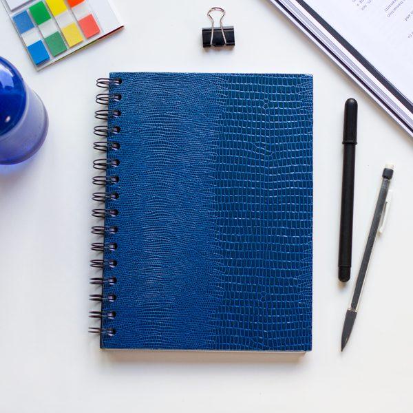 Agenda serpiente azul