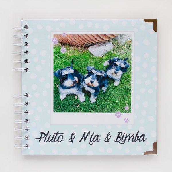 portada album mascotas dots