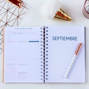 agenda serpiente melocoton pagina objetivos mensual